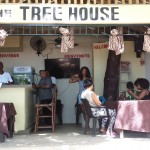 The Tree House Lounge bar sosua beach