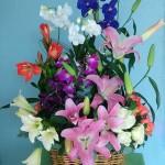 floristeria flores y detalles sosua