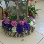 flower shop sosua cabarete