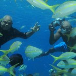 Bravo Water Sport Puerto Plata Snorkeling Scuba Diving Tours in Sosua Bay