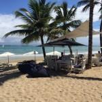 cabarete beach bar eze