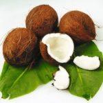 Coconut or coco