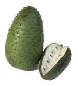 Guanábana / soursop