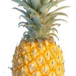 Pineapple or piña
